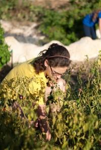 Darya working in the community garden